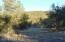 359 Sierra Verde Ranch, Seligman, AZ 86337