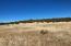 767 Johnny Ridge Road, Seligman, AZ 86337