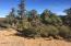 15125 N Four Mile Creek Lane, Prescott, AZ 86305