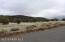 48955 N Anvil Rock Road, Seligman, AZ 86337