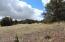 Tbd Antelope Run Rd, Seligman, AZ 86337