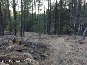 2xxx E Misty Mountain Loop, Prescott, AZ 86303