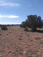 79 N Hyde Park Road, Seligman, AZ 86337