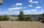 Level - Spacious Backyard with Views of Watson Lake
