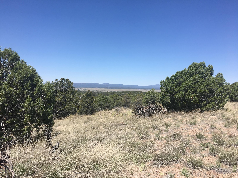 Photo of Rambling, Prescott, AZ 86305