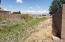 Backs to HOA/Preserve Drainage