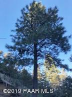 8230 S Breezy Pine Road, Mayer, AZ 86333