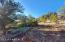 Lot 55 Shadow Rock Ranch, Seligman, AZ 86337