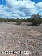 30207139d N Cattle Drive, Ash Fork, AZ 86320