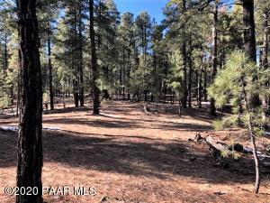 3200 E Misty Mountain Loop, Prescott, AZ 86303