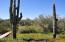 1735 E Tamar Road, Phoenix, AZ 85086
