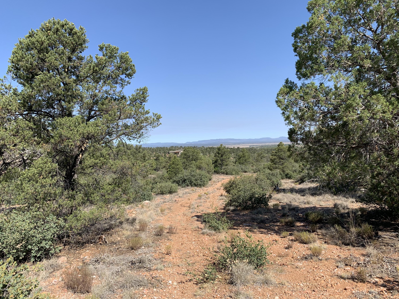 Photo of 6001 Dillon Wash, Prescott, AZ 86305