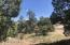 1860 Rustling Oaks Lane, Prescott, AZ 86303