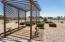 Backyard/Grape Arbor