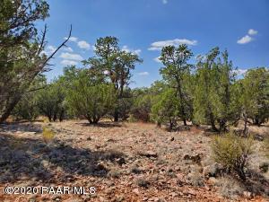 000 Lone Star Road, Seligman, AZ 86337