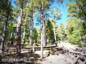 1500 E Forest Service Rd. 12.488, Prescott, AZ 86303