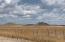 0 E Perkinsville Road, Chino Valley, AZ 86323
