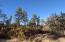 1620 S Sunnyside Road, Prescott, AZ 86303
