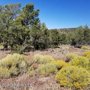 2887 E Overlook Drive, Williams, AZ 86046