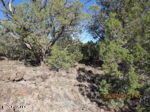 1167 W Cienega Drive, Ash Fork, AZ 86320