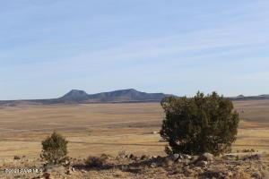Lot 153 Sierra Verde Ranch, Seligman, AZ 86337