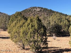 320 Acres Cross Mtn Trout Creek, Seligman, AZ 86337