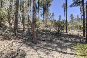 3605 W Copper Basin Road, Prescott, AZ 86305
