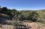 1898 Forest View, Prescott, AZ 86305