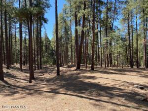 3300 Misty Mountain Loop, Prescott, AZ 86303