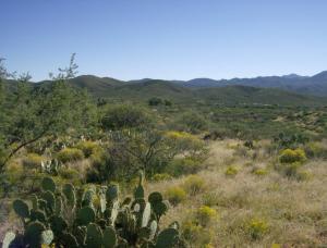 0 W Single Six Road, Kirkland, AZ 86332