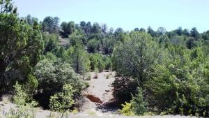0 (Lot A) Sarah Road, Prescott, AZ 86305