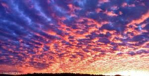1741 Birdsong, Prescott, AZ 86301