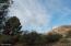 Native junipers and granite mountain