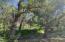 Butte Creek Greenspace