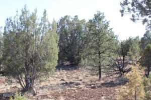 81g Isabella, Seligman, AZ 86337