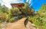 Whimsical walkway between house and greenhouse