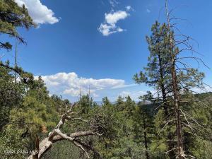 519d Cayuga, Prescott, AZ 86303