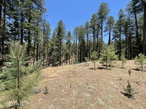 3400 E Misty Mountain Loop, Prescott, AZ 86303