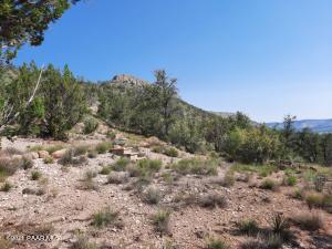 1240 Svr Lot C, Seligman, AZ 86337