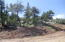 1804 Timber Cove Lane, Prescott, AZ 86305