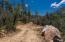 1101 White Spar Road, Prescott, AZ 86303