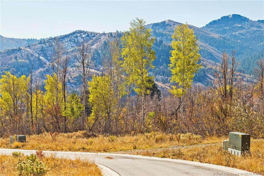8965 Parleys Lane, Park City, Utah 84098, ,Land,For Sale,Parleys,20190109112430415765000000