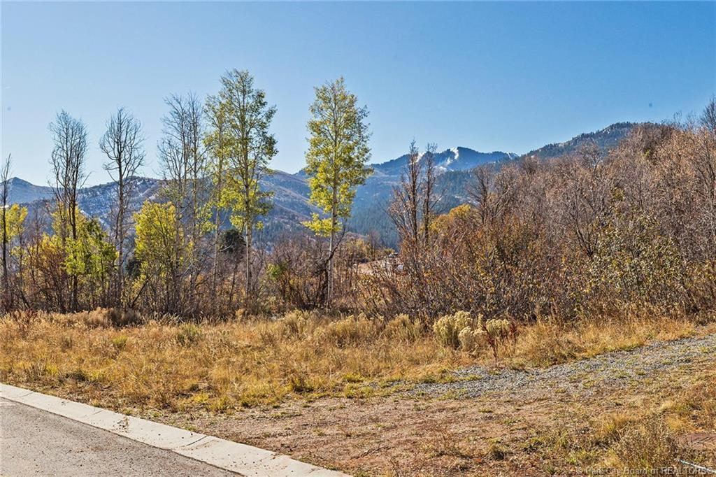 8959 Parleys Lane, Park City, Utah 84098, ,Land,For Sale,Parleys,20190109112430415765000000