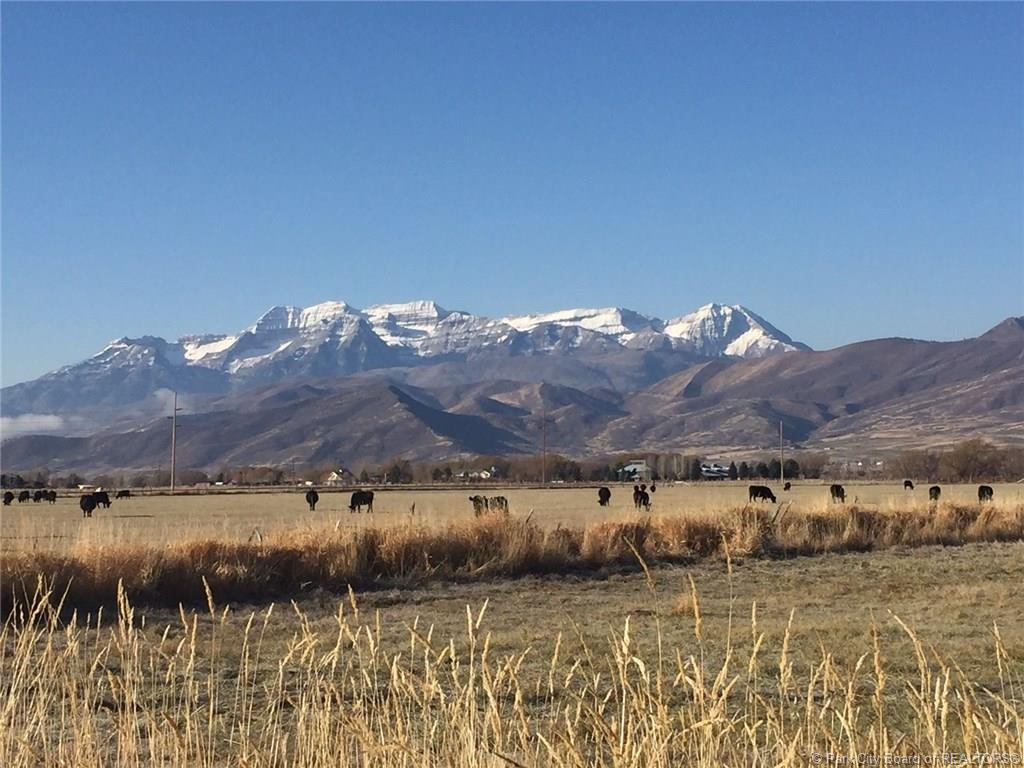 1439 Midway Lane, Heber City, Utah 84032, ,Land,For Sale,Midway,11803744