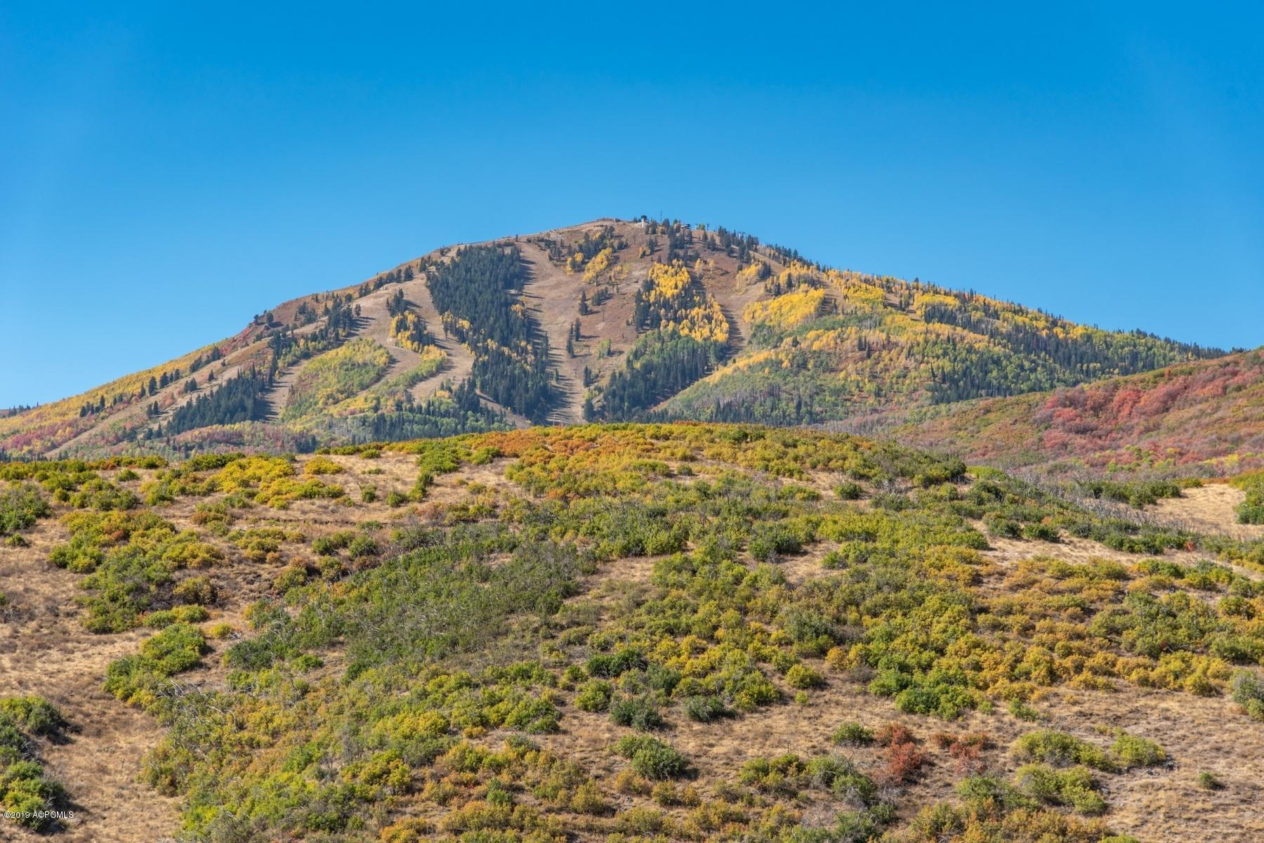 11257 Orion Drive, Heber City, Utah 84032, ,Land,For Sale,Orion,11908495