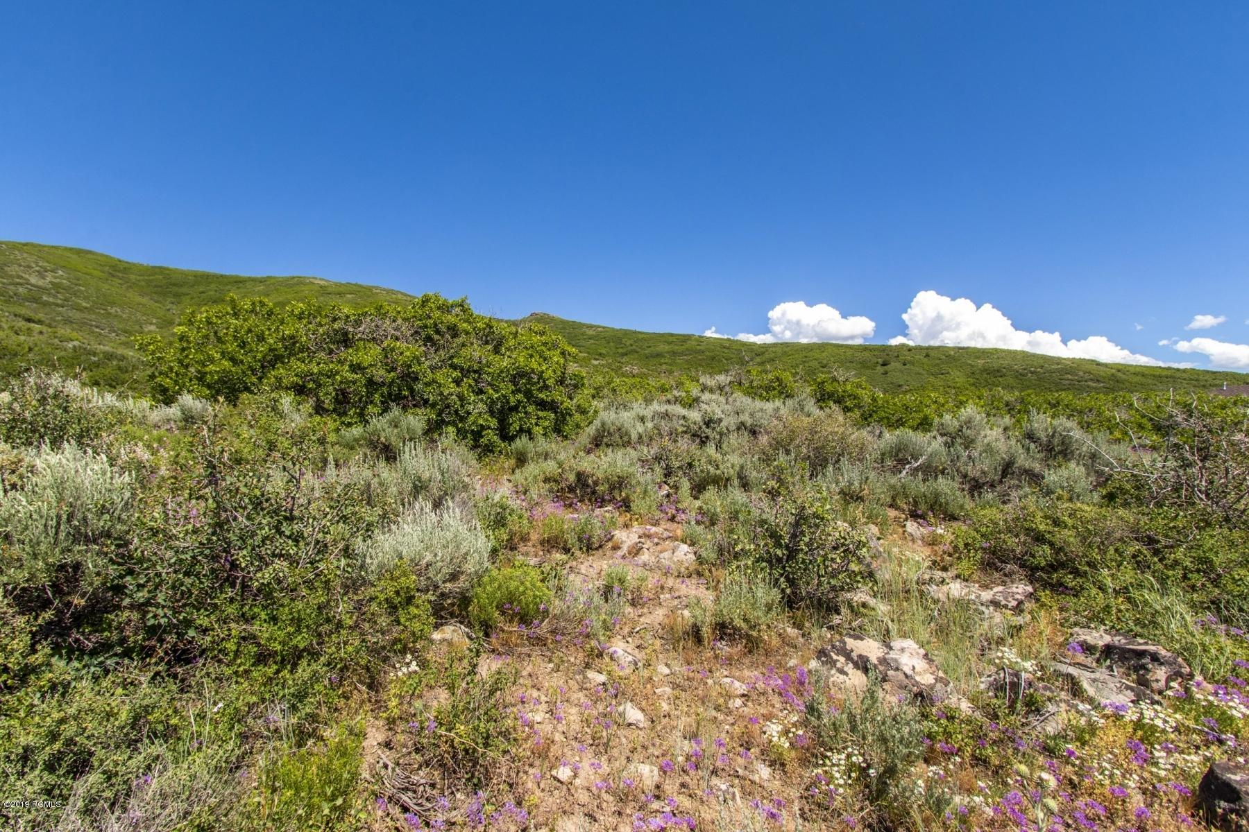 11624 White Tail Court, Heber City, Utah 84032, ,Land,For Sale,White Tail,20190109112430415765000000