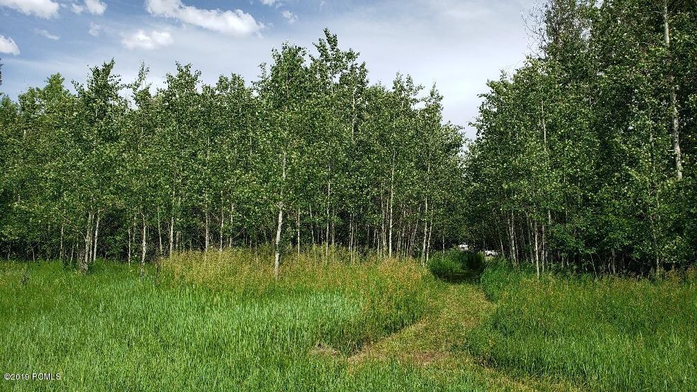 12+/- Mi. Ut-65, Morgan, Utah 84033, ,Land,For Sale,Ut-65,11903362