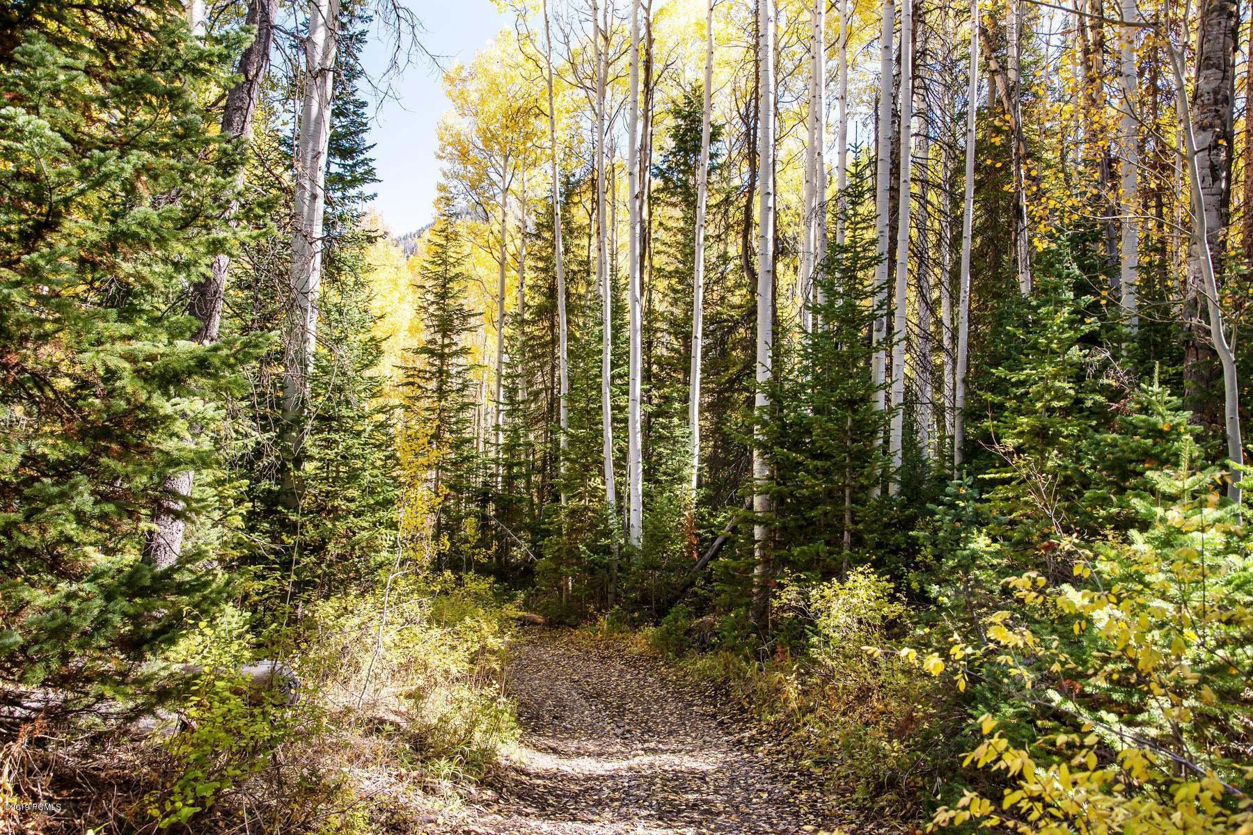 Oakley, Utah 84055, ,Land,For Sale,11908221