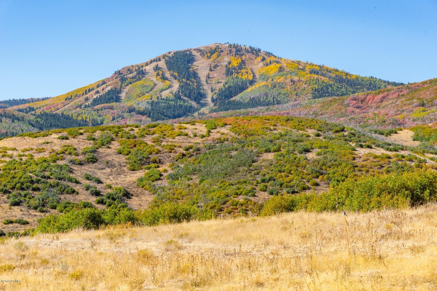 11352 Orion Drive, Heber City, Utah 84032, ,Land,For Sale,Orion,12002724
