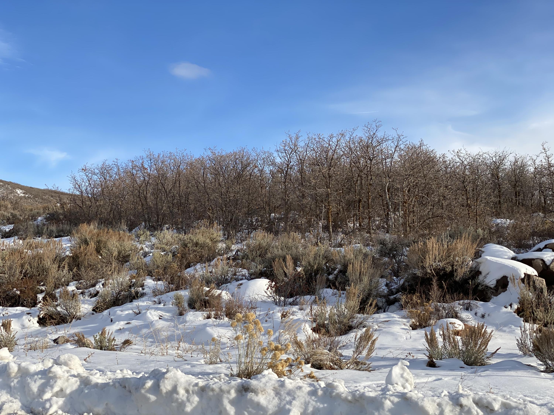 11503 Soaring Hawk Lane, Hideout, Utah 84036, ,Land,For Sale,Soaring Hawk,11908777
